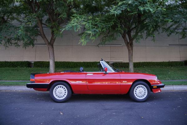 Used 1988 Alfa Romeo Spider Graduate Convertible with 23K original miles Graduate | Torrance, CA