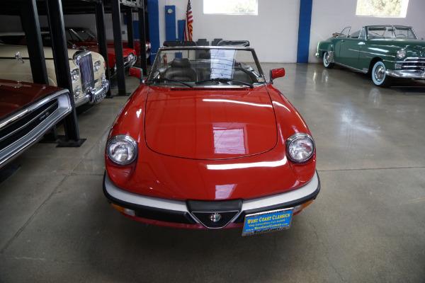 Used 1988 Alfa Romeo Spider Graduate Convertible with 23K original miles Graduate   Torrance, CA
