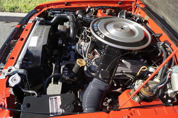 Used 1983 Ford Mustang GLX Opal & Red   Torrance, CA
